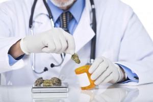 GreenWay- Maryland-Receives-1,000-Plus-Medical-Marijuana-Applications